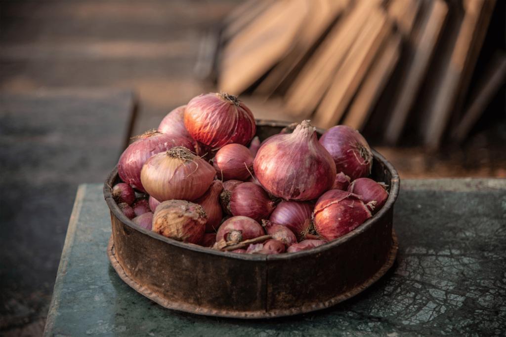 Zwiebeln fördern die Schlankmacherbakterien